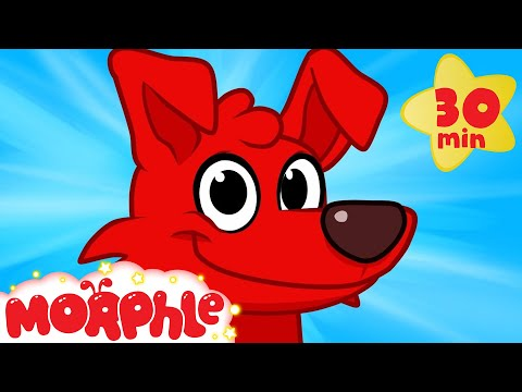My Magic Puppy Training - My Magic Pet Morphle dog videos for kids