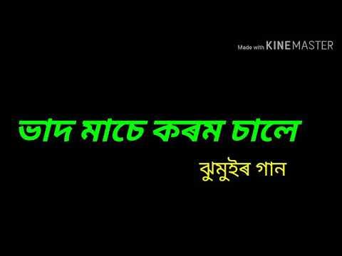 Bhado Mase By UMESH TANTI