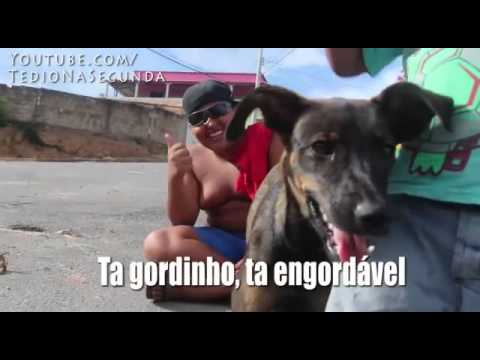 Tah Gordinho Ta Engordavel
