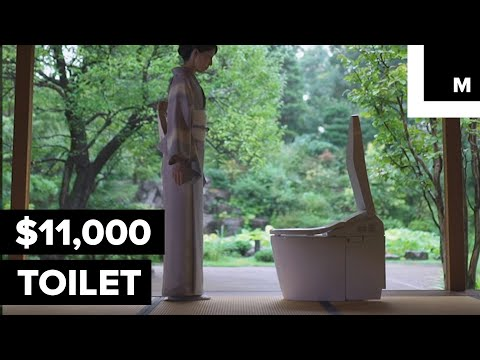 $11,000 Smart Toilet Basically Does Everything But Poop for You