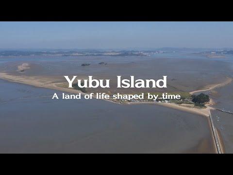 Yubudo (Yubu) Island, Guem Estuary - A shorebird haven in the Yellow Sea