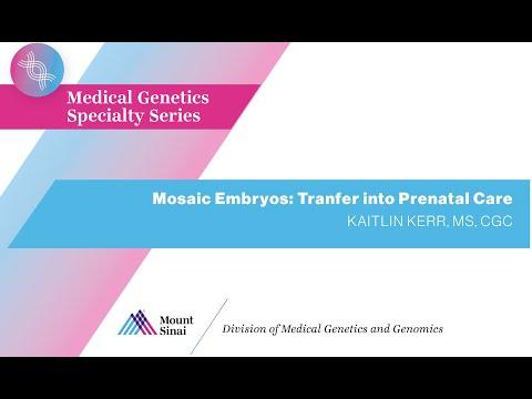 Mosaic Embryos: Transfer into Prenatal Care