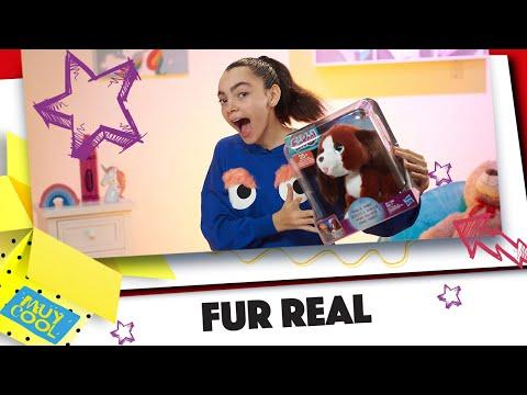 Aúlla Y Te Responderá Howie El Perro Aullador (Unboxing Felix)