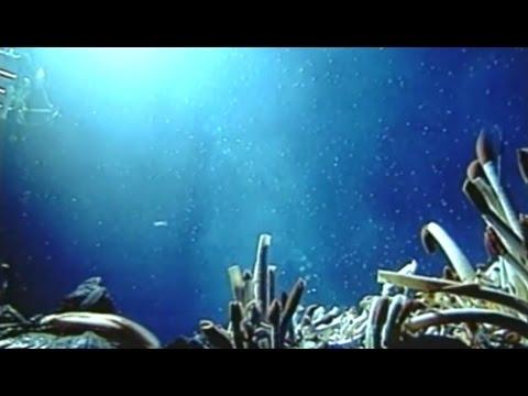 OCEAN LEADERSHIP - DISCOVERY :: UNDERSTANDING :: ACTION