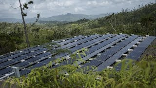 Will Green Growth Save Puerto Rico?