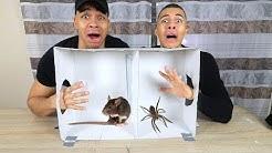 WAS IST IN DER BOX CHALLENGE EXTREM !!! | Kelvin und Marvin
