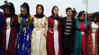 selimpinar mahallesi heboka aşireti snnet dğn 2 grup şiyar bekir altay 0535 833 41 02