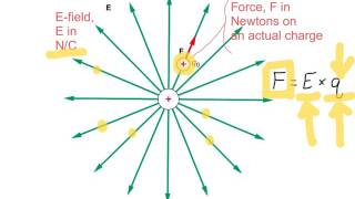 Electric Field values