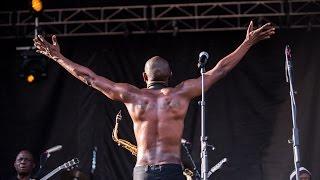 seun kuti and egypt 80 kalakuta boy live at rock the garden