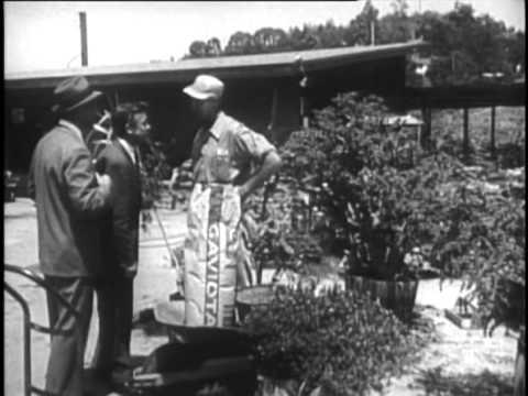 Gangster Story 1959 WALTER MATTHAU