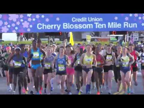 2018 Cherry Blossom Credit Union Race Day