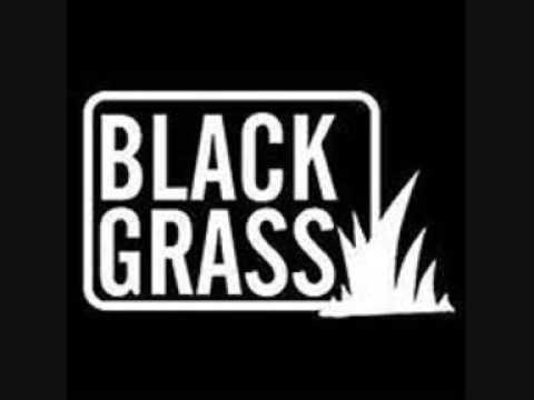 Black Grass Nice up