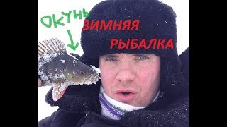 ЗИМНЯЯ РЫБАЛКА и другие приключения в лесу...