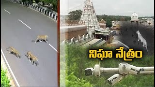 TTD step up security, install CCTV cameras At tirumala