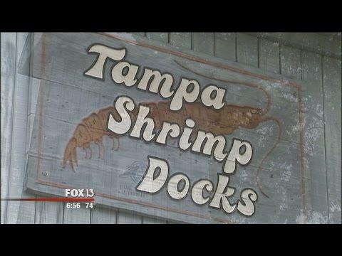 Tampa's Shrimp Docks