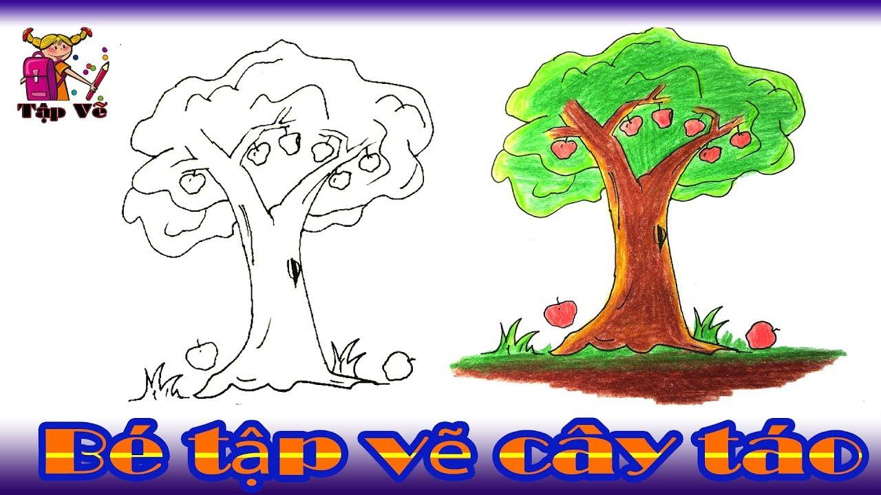 Bé tập vẽ cây táo theo mẫu | drawing an apple tree