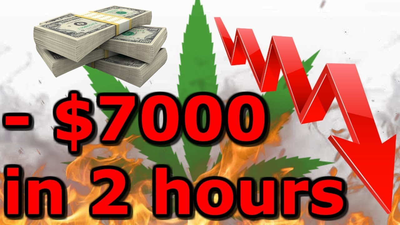I Lost 7000 In 2 Hours Tilray Stock Up 100 In One Day Then