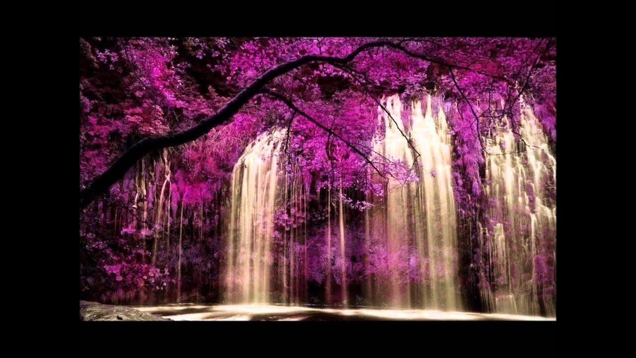 paisajes de cascadas y jardines para admirar youtube