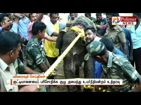 Team to inspect the condition of Rescued 3 year old Elephant in Kovai | Polimer News