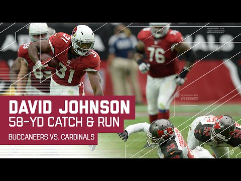 David Johnson Takes Carson Palmer