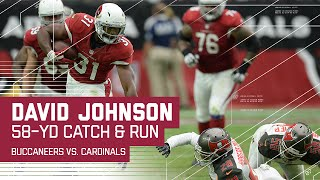 David Johnson Takes Carson Palmer's Pass 58 Yards! | Buccaneers vs. Cardinals | NFL