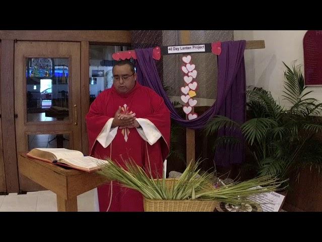 Informacion sobre el Domingo de Ramos