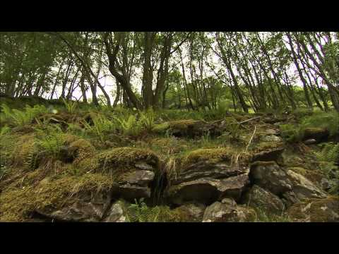 Railway Walks Full Episode 4 : The Whisky Train - Speyside - The Strathspey Railway