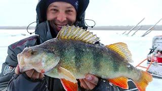 Дикие поклевки КИЛОГРАММОВЫХ ОКУНЕЙ Зимняя рыбалка с ночевкой в комфорте Вот это жор