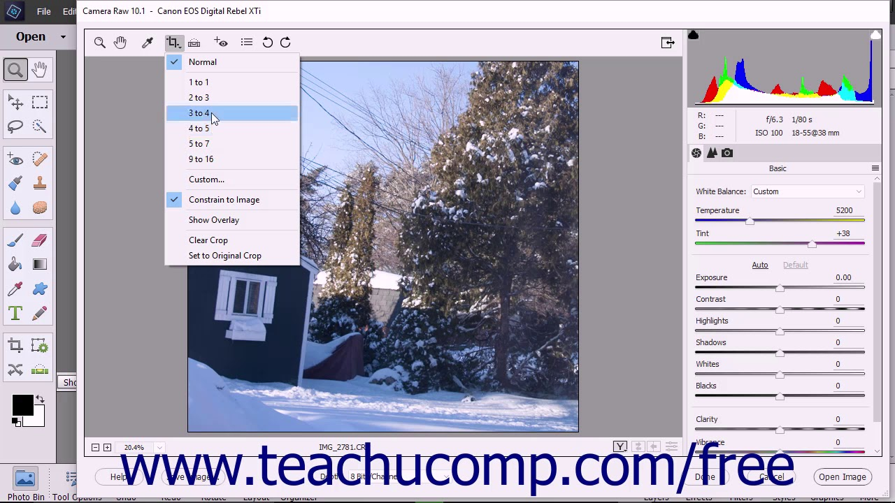 Camera Raw Tools in Photoshop Elements- Instructions and