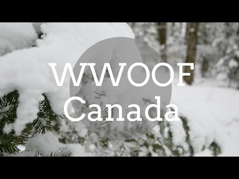WWOOF Is Transform // Québec, Canada