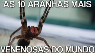 AS 10 ARANHAS MAIS VENENOSAS DO MUNDO 2016 HD MP3