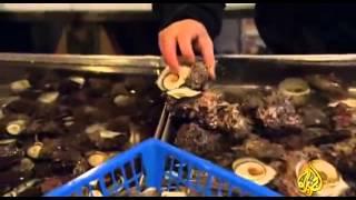 """اكبر سوق سمك في العالم """" تسوكيجي"""" - وثائقي"""