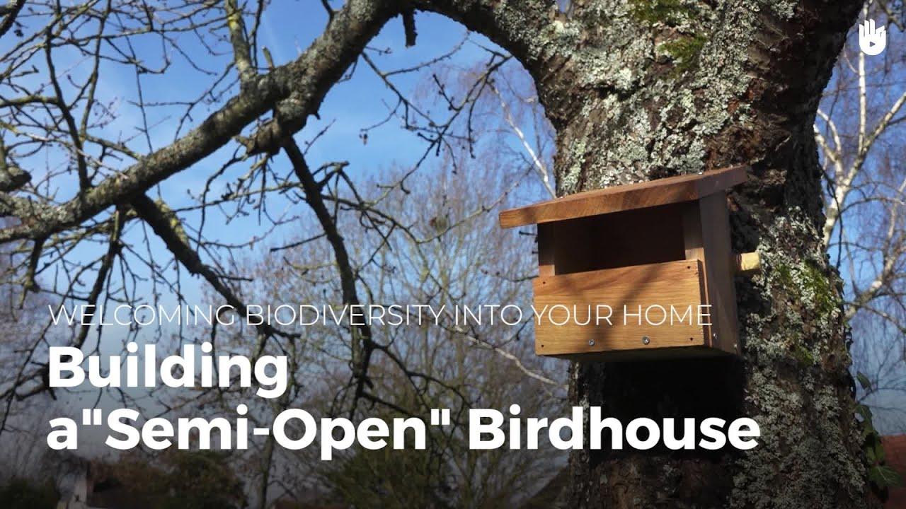 Building A Semi Open Bird House Biodiversity Youtube