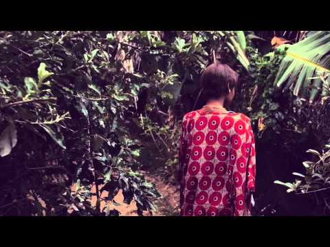 DJ Merlon ft Black Motion and Mondli Ngcobo - Tale of the Monkeys (Official Music Video)