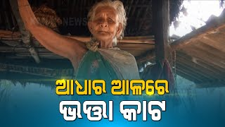 Malkangiri: Elderly Woman Faces Problem For Allowance Money Due To No Aadhar Card