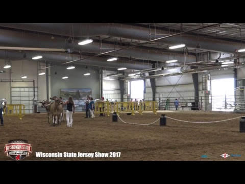 Wisconsin State Jersey Show 2017