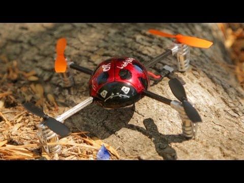Walkera QR Ladybird Quadcopter Review