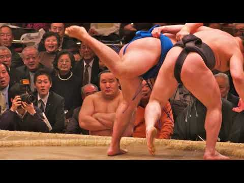Sumo Japanese Traditional Sport Wrestling