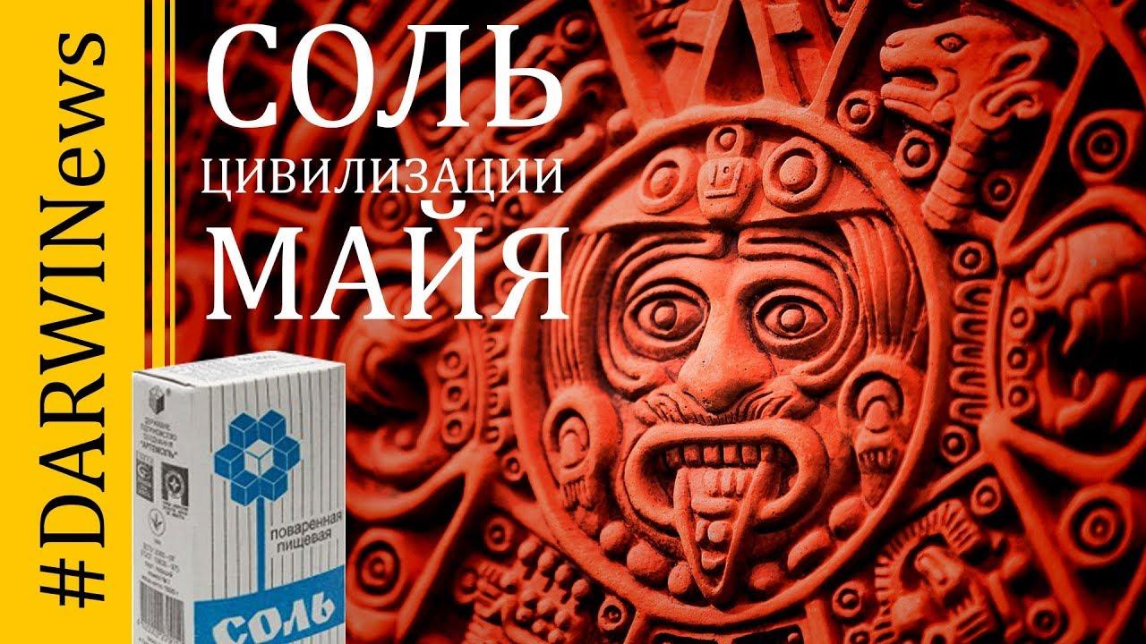 Свежие находки древней цивилизации Майя! Елена Сударикова #DARWINews