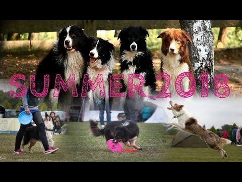 SUMMER 2018 ~ Dogs-Tricks-Fun