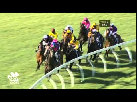 Race 7 - Ascot - 10/11/12
