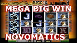 MEGA BIG WIN NOVOMATICS ONLINE OVO CASINO