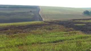 Mii de hectare de vegetație arsă în raioanele Orhei, Dubăsari, Criuleni