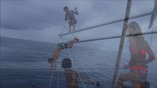 2018 - Brume et Pinocchio - Navigation transatlantique Bahamas aux Açores