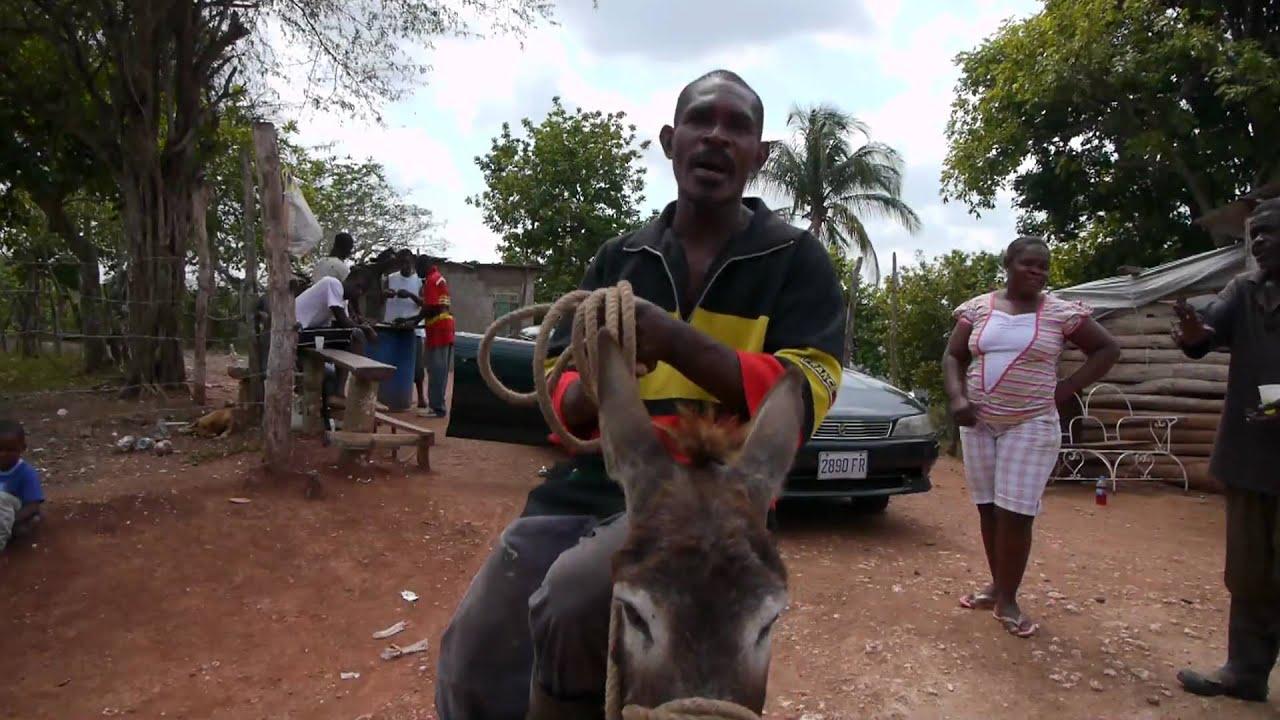 lady nude ride donkey