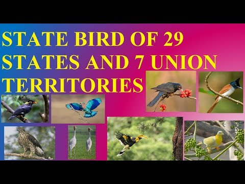 STATE BIRD OF 29 STATES AND 7 UNION TERRITORIES