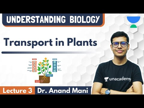 Transport In Plants | Lecture 3 | NEET Biology | NEET UG | Dr. Anand Mani