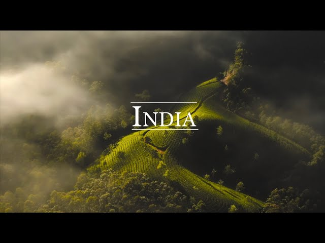 Welcome to India ! [CINEMATIC TRAVEL FILM]