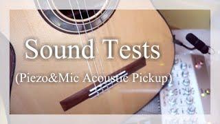 | Sound Test | Anthem SL Classic & DPA 4099 | Grace Design Felix | With Classic Guitar |