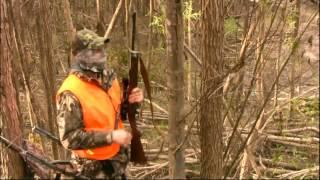 Deer Hunting White River NWR